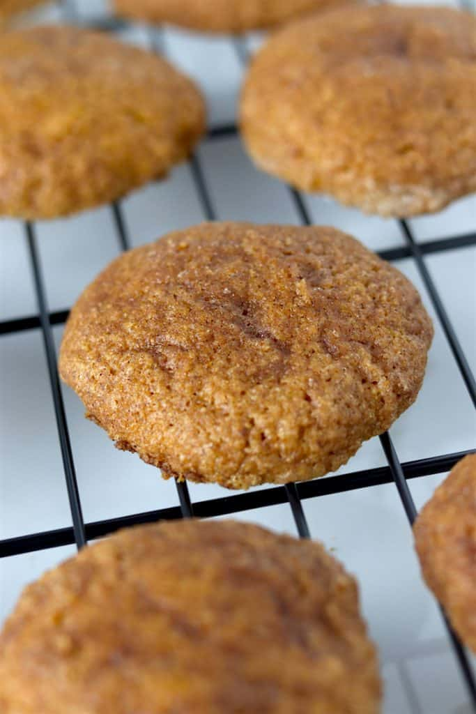 up close soft baked pumpkin snickerdoodles