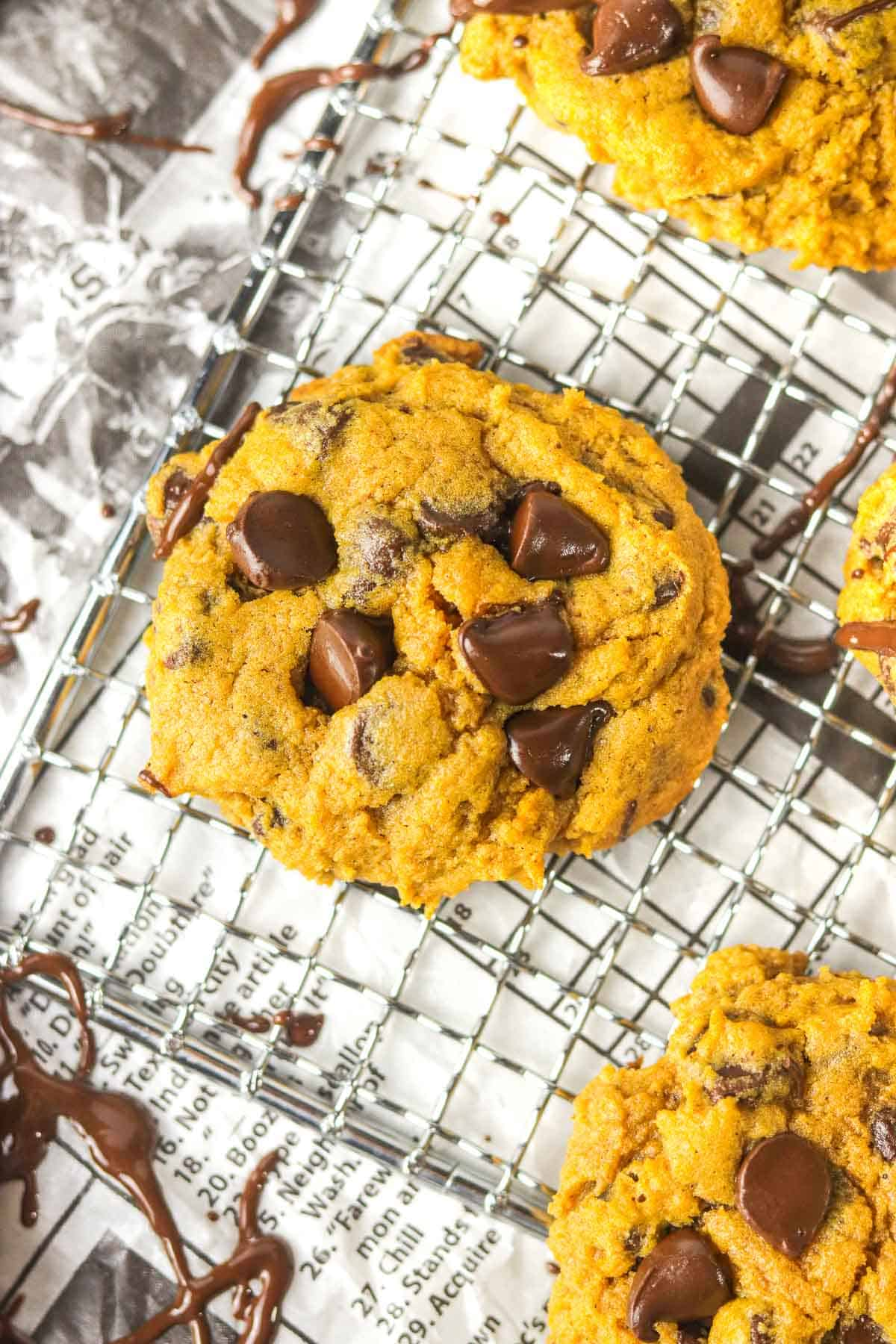 chocolate chip pumpkin cookie on a cooling rack over newspaper.