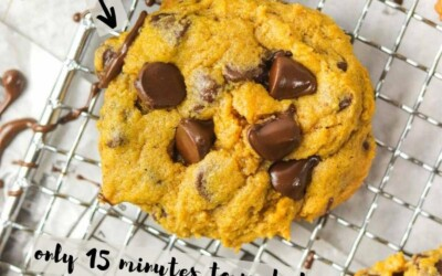 the best ever chocolate chip pumpkin cookies.