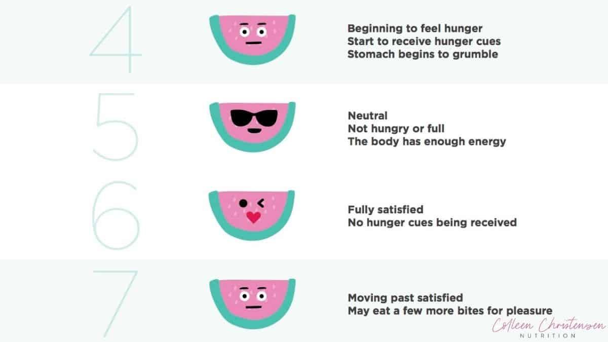 4-7 on the hunger fullness scale,