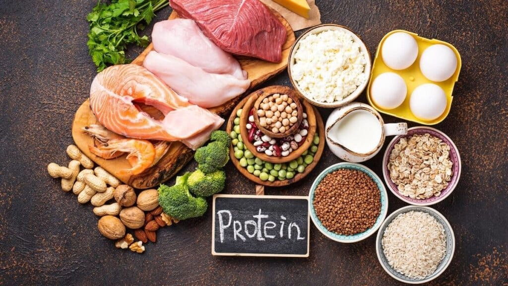 protein for flexible dieting