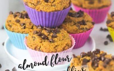 gluten free pumpkin muffins made with almond flour