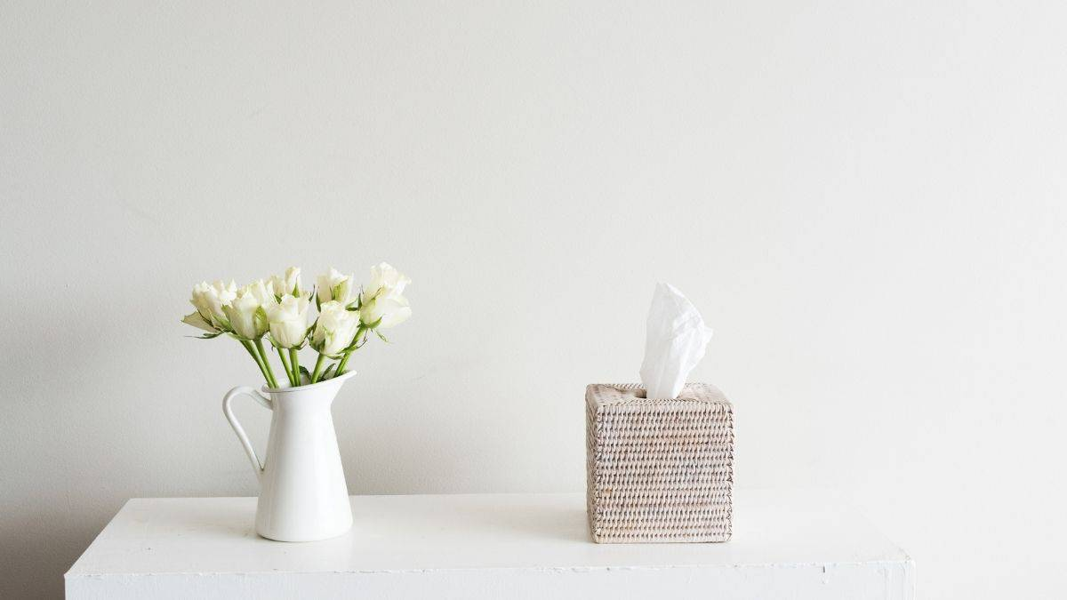 Tissues and tulips on the counter for when you are sick.
