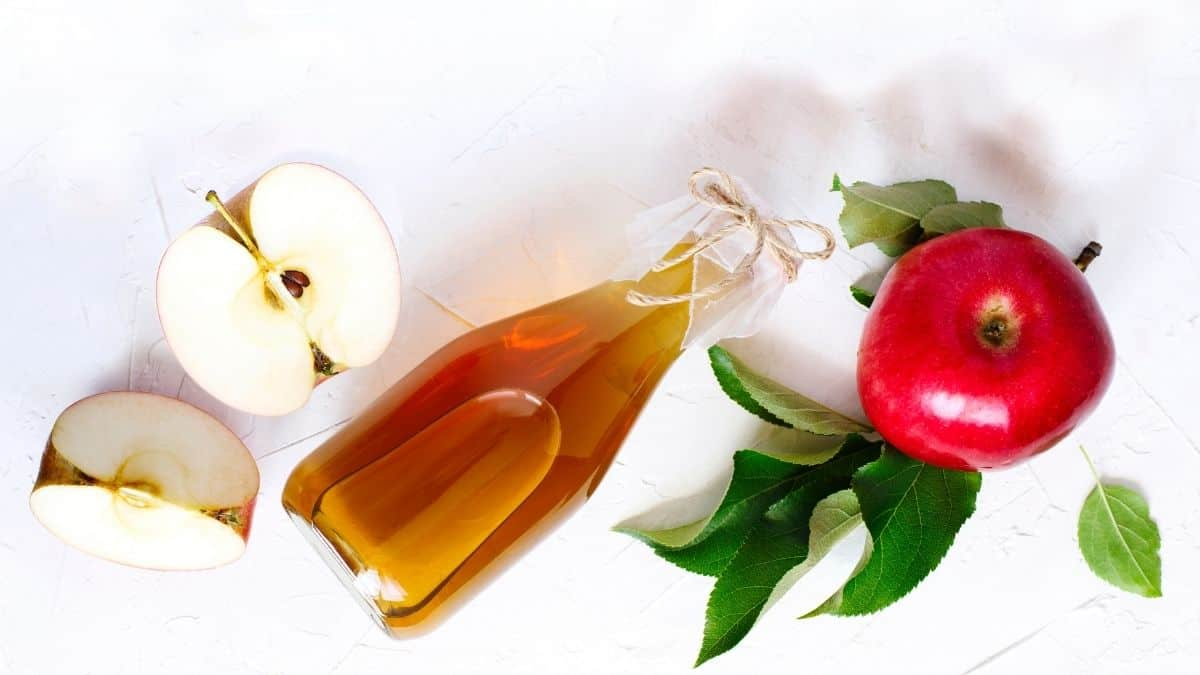 a bottle of apple cider vinegar with apples and leaves on a white background.