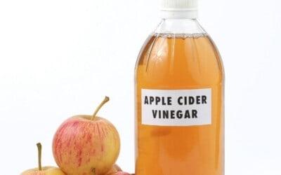 apple cider vinegar gummies review