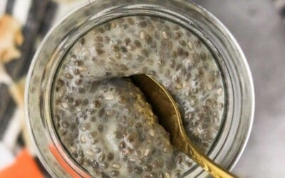 high protein and fiber chia seed pudding