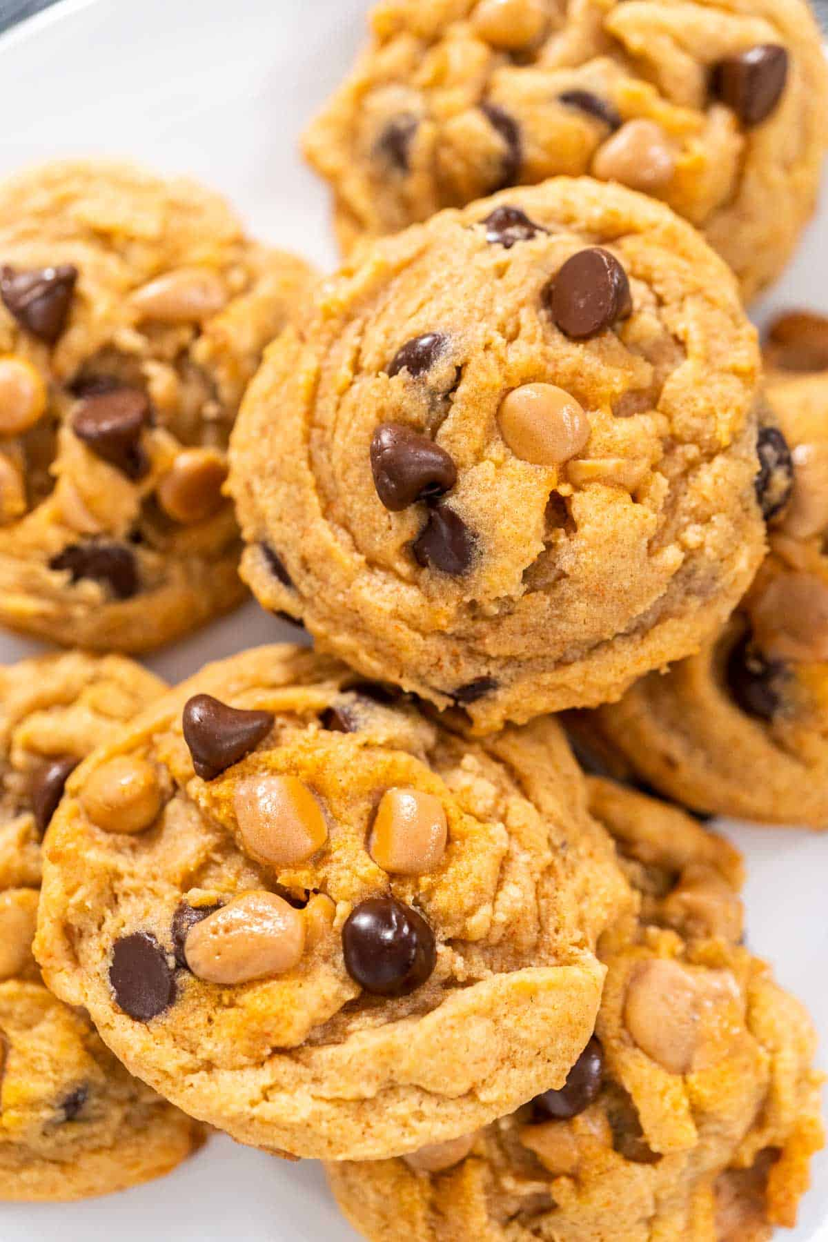 A close up shot of a plate of Chocolate chip butterscotch cookie.