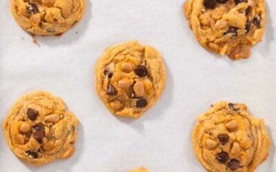 Chewy Chocolate chip butterscotch cookies.