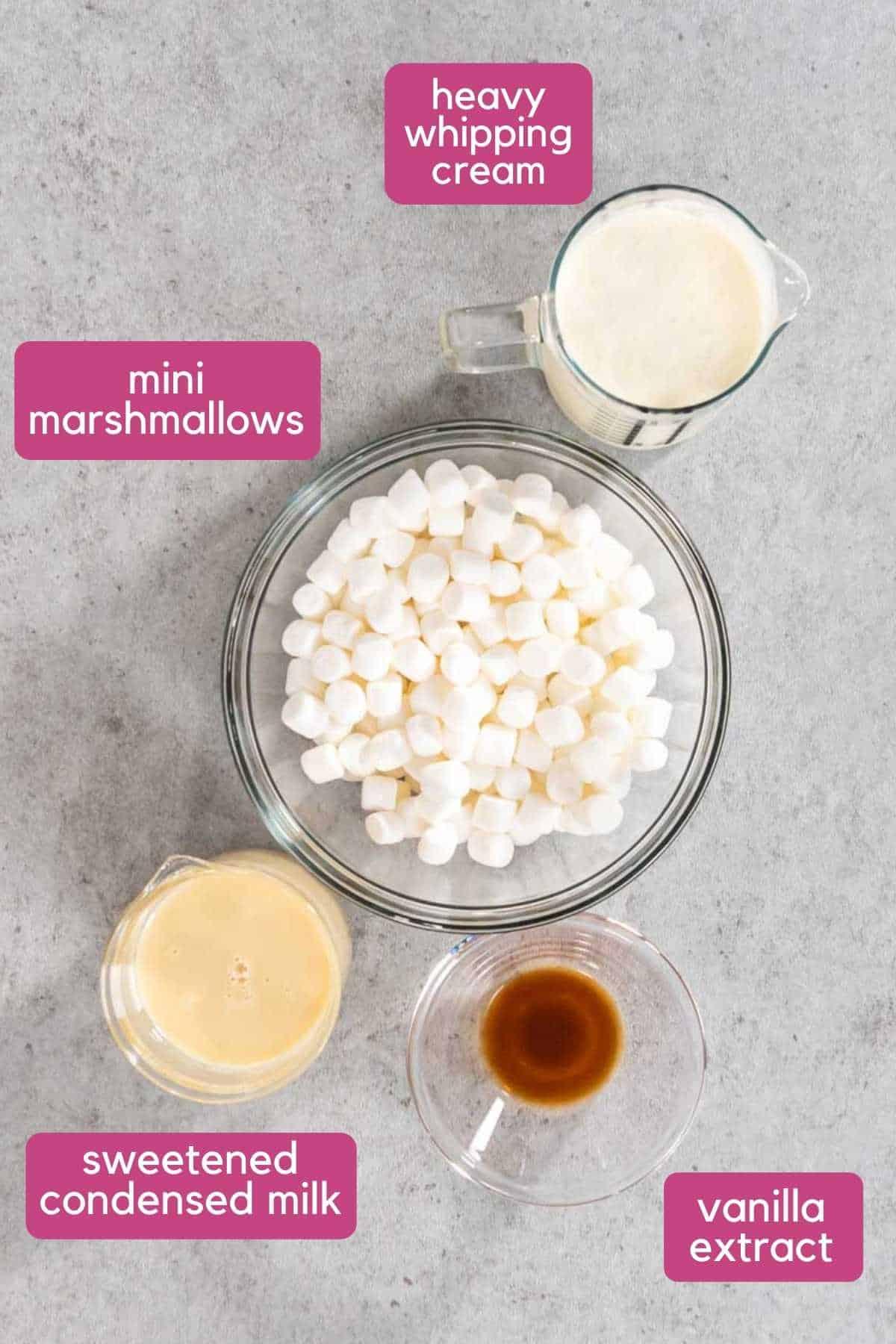 No Churn Toasted Marshmallow Ice Cream ingredients.