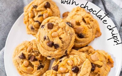 butterscotch cookies with chocolate chips.
