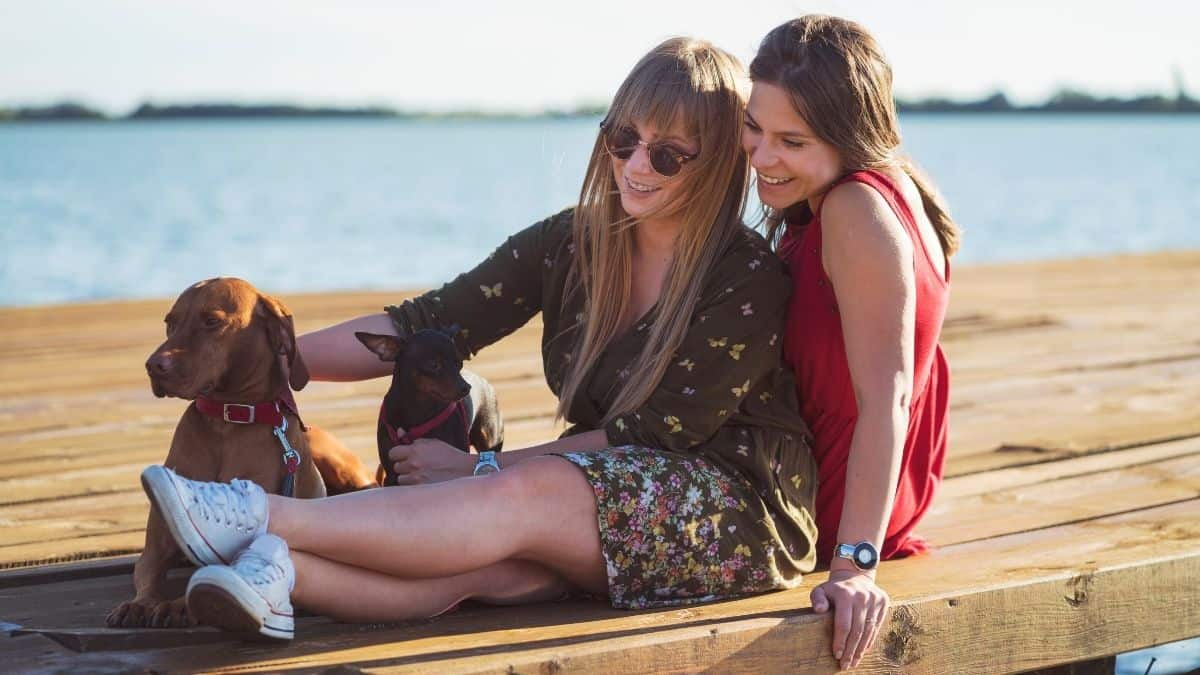 Two women sitting on a dock petting their dogs.