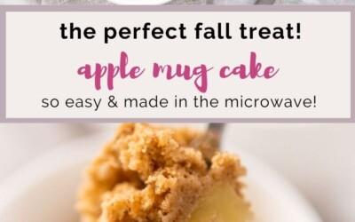 the perfect fall treat apple mug cake.